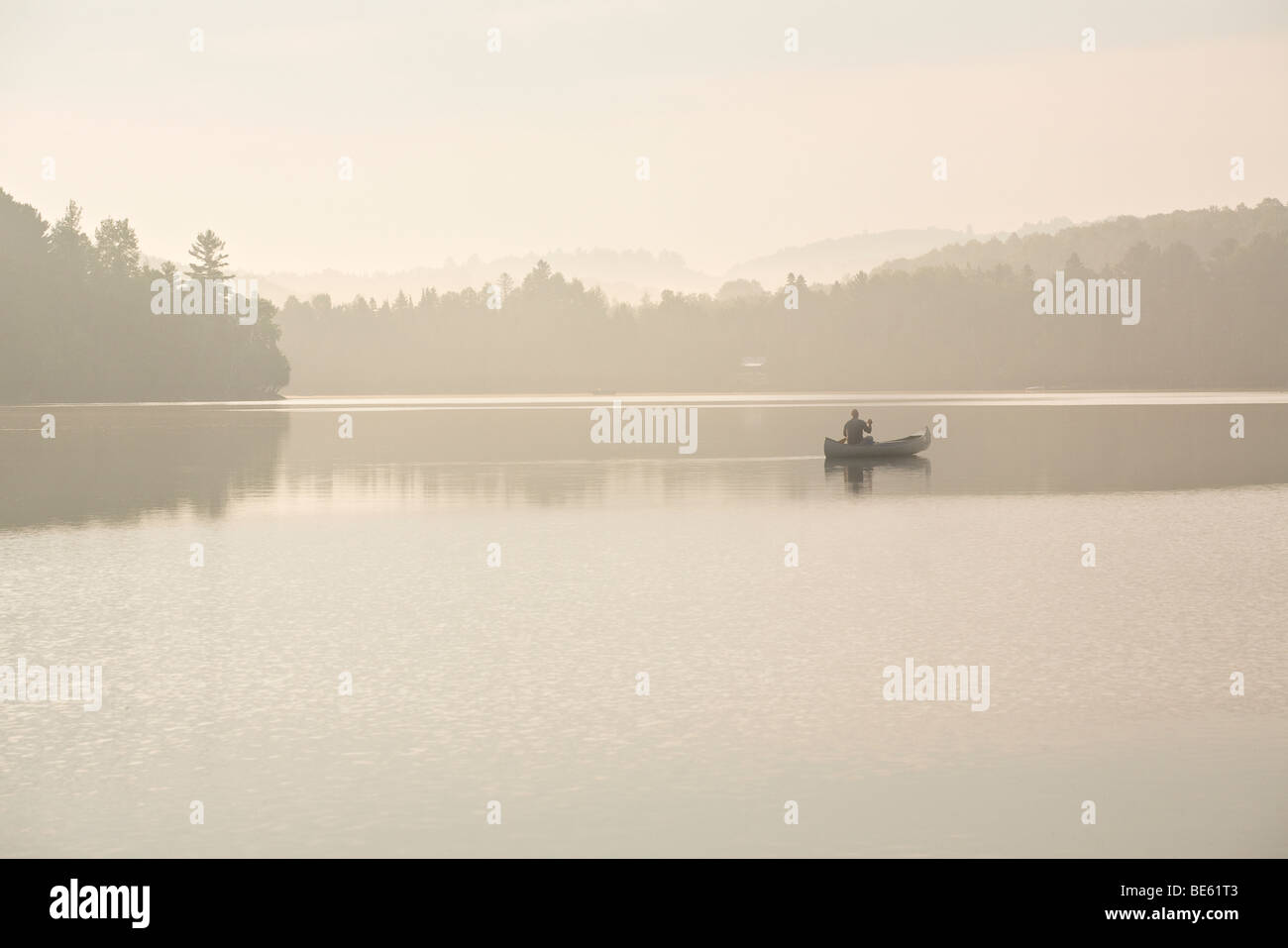 Early Morning Paddle. A single canoeist paddles on a misty early morning on calm lake surrounded by trees. - Stock Image