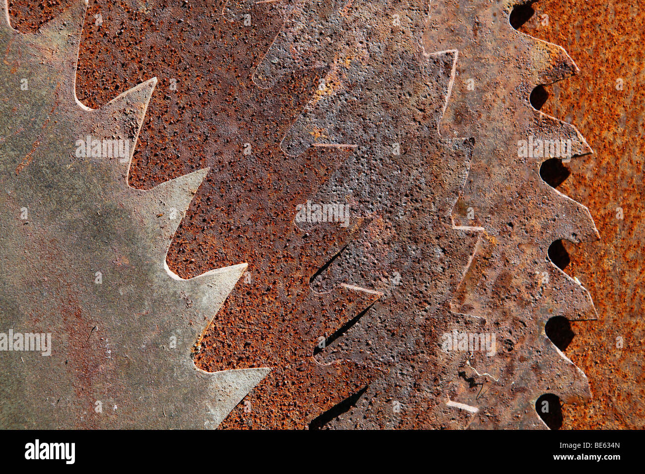 Rusted saw blades - Stock Image