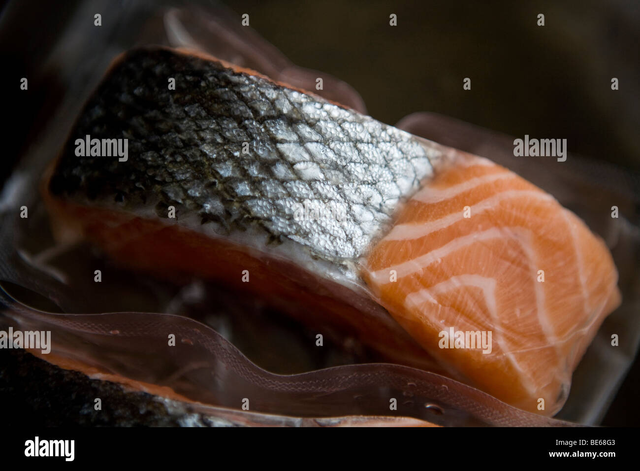 frozen salmon fillets Stock Photo