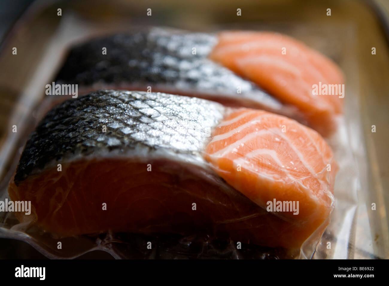 frozen salmon fillets - Stock Image