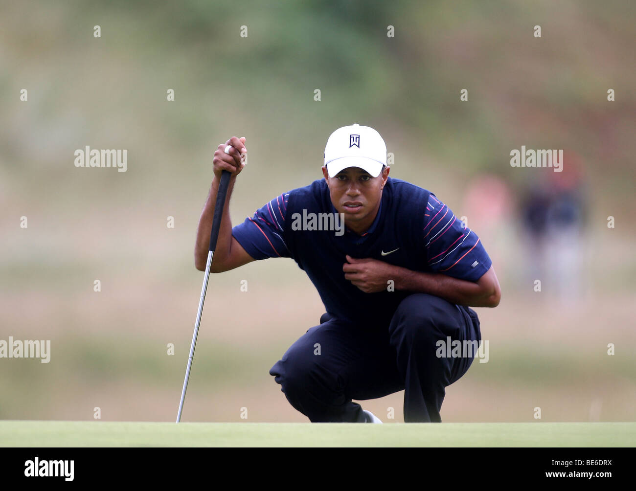 TIGER WOODS LINES UP PUTT THE OPEN TURNBERRY 2009 TURNBERRY AYR SCOTLAND 16 July 2009 - Stock Image