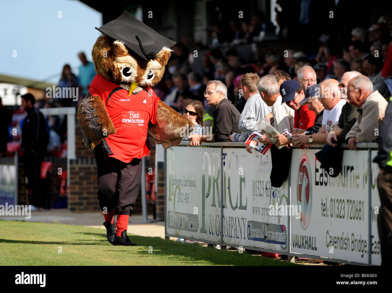 Ollie the owl football mascot at eastbourne borough entertains the fans before a match - Stock Image