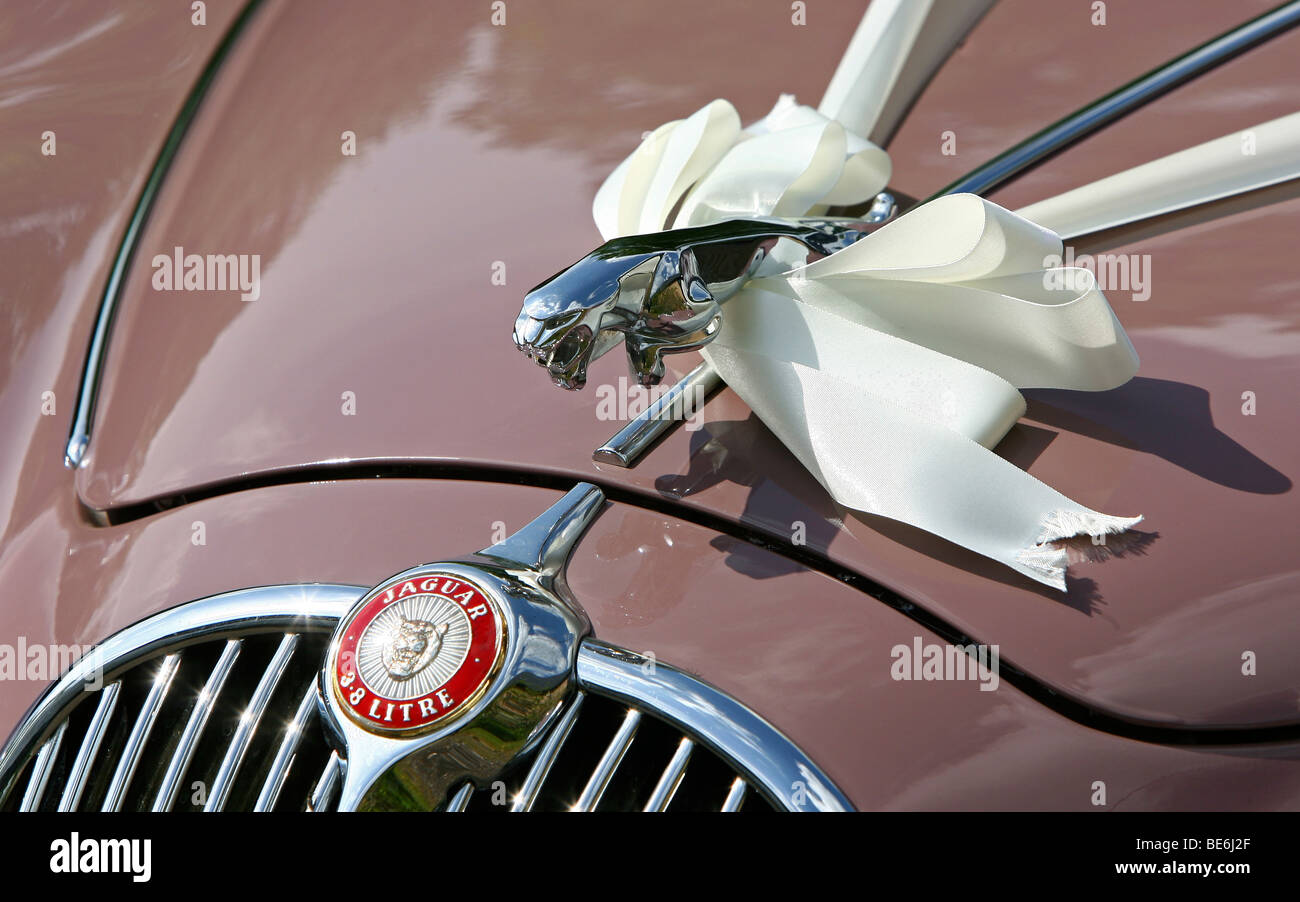 Wedding ribbons are seen tied to the emblem of a MkII Jaguar at a church in Suffolk, east England - Stock Image