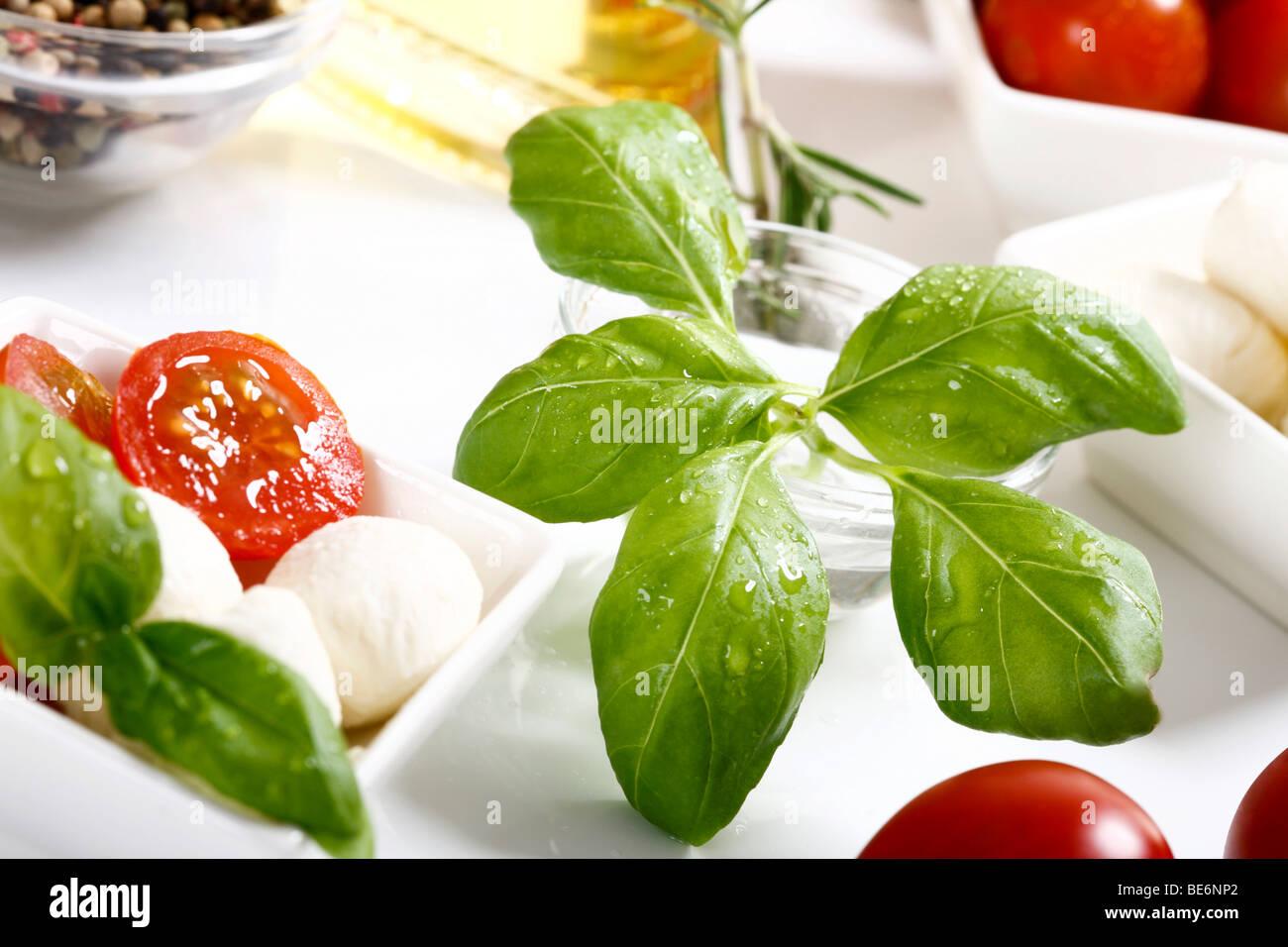 Basil next to tomatoes and mozzarella Stock Photo
