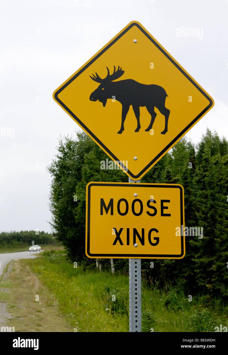 Moose Crossing Sign Anchorage Alaska Stock Photo