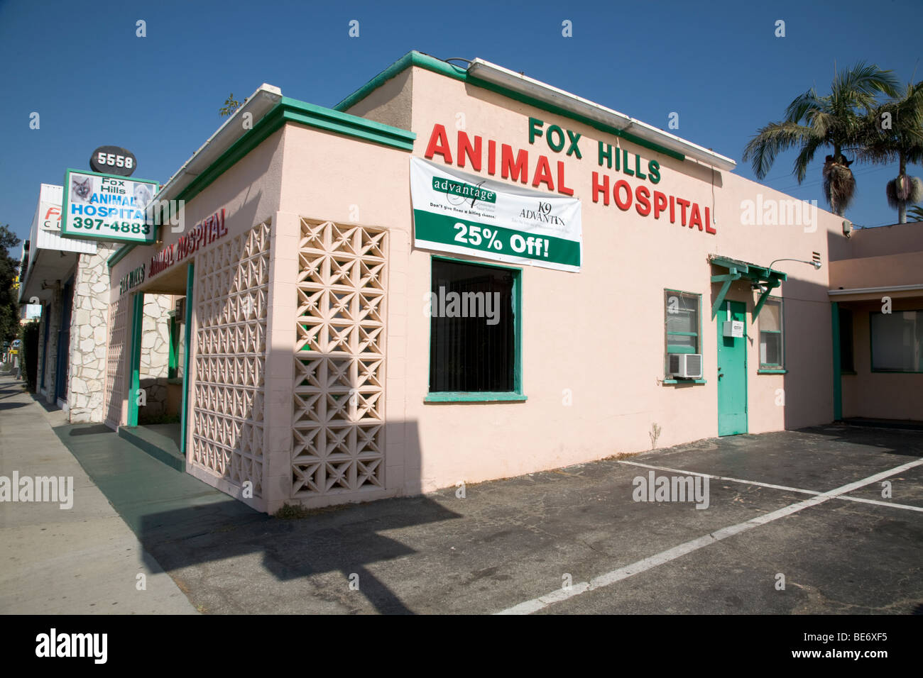 Animal Hospital Surgery For The Treatment Of Sick Animals Los Angeles California - Stock Image