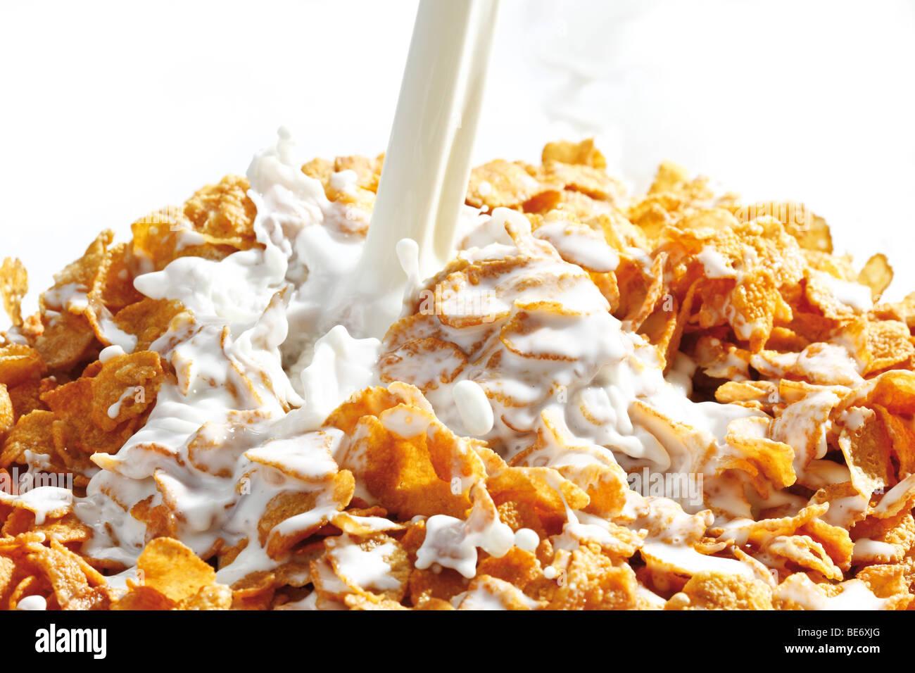 Cornflakes with milk Stock Photo