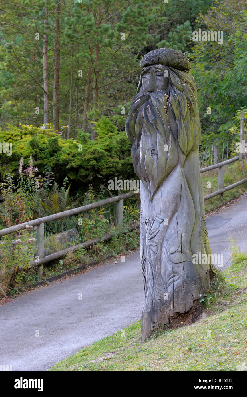 Tree carving at Abrahans heights. - Stock Image
