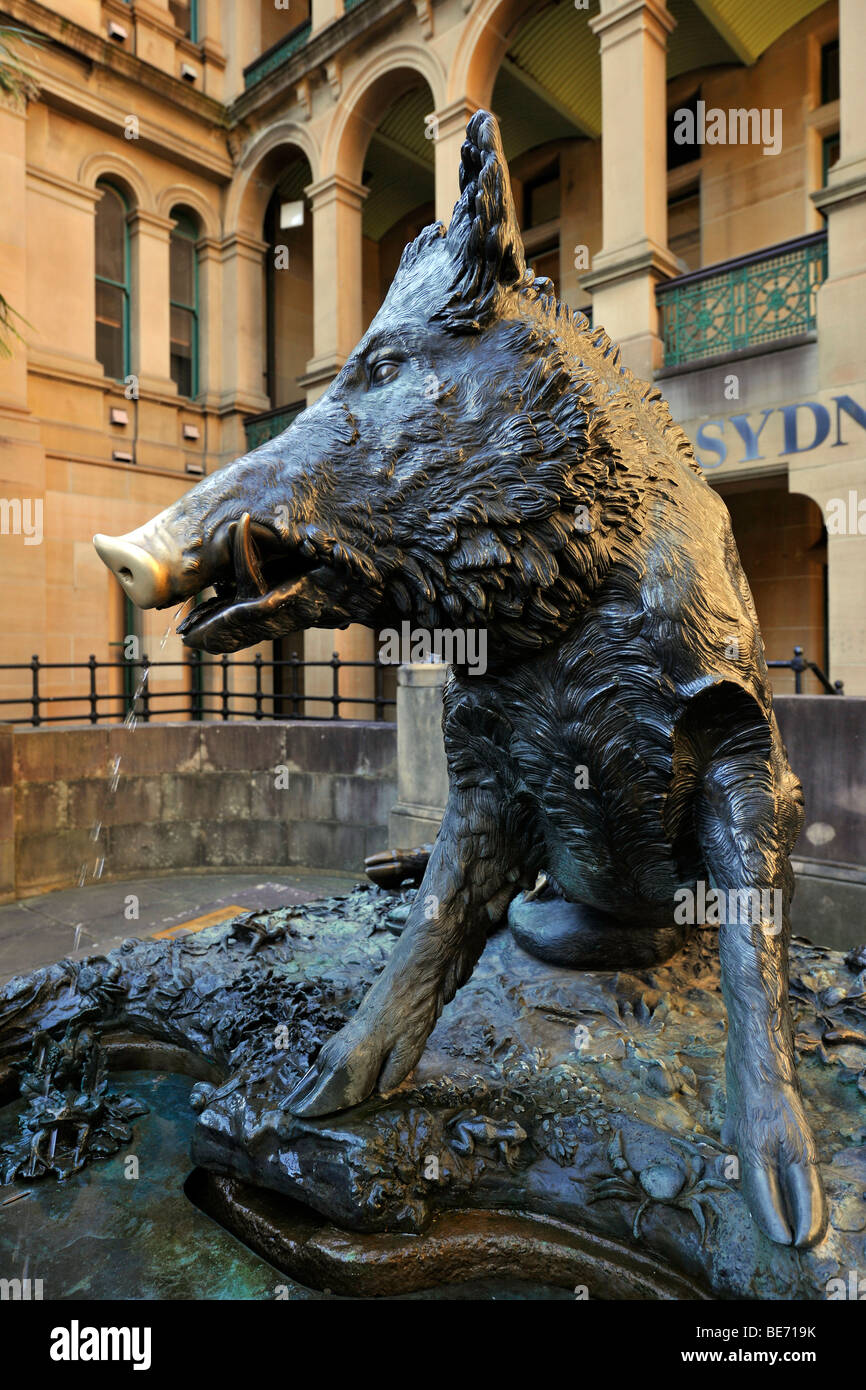 Il Porcellino, a bronze boar used as a lucky charm, Sydney Hospital, Sydney, New South Wales, Australia - Stock Image
