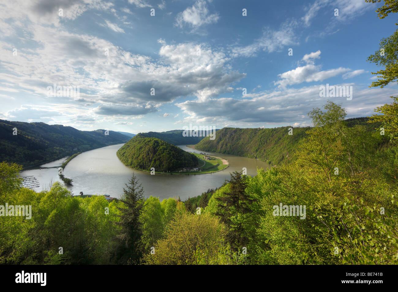 Danube River, Schloegener loop, Schloegen, Upper Austria, Austria, Europe - Stock Image