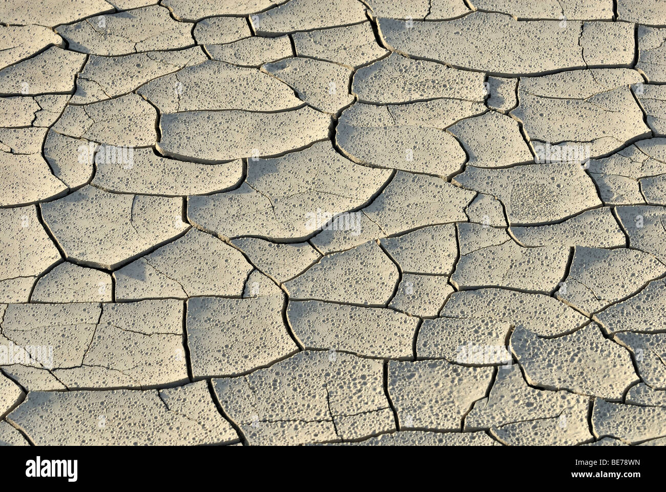 Dried mud puddle with dry cracks and traces of rain drops, Highway 24 near Caineville, Utah, USA Stock Photo