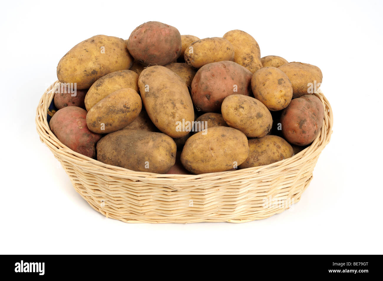 Fresh harvested potatoes in a basket - Stock Image