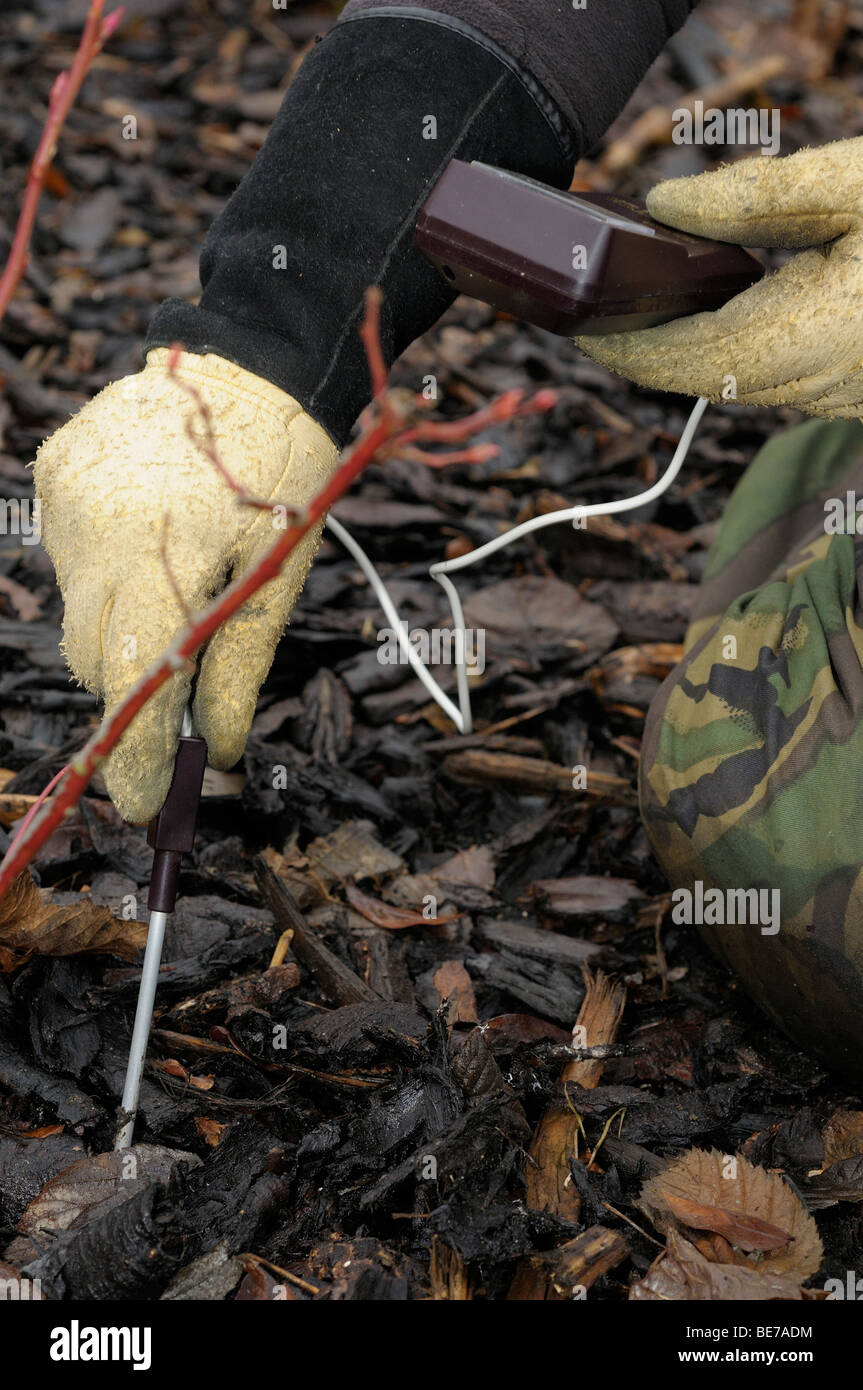 Using a soil ph meter in the ground. - Stock Image