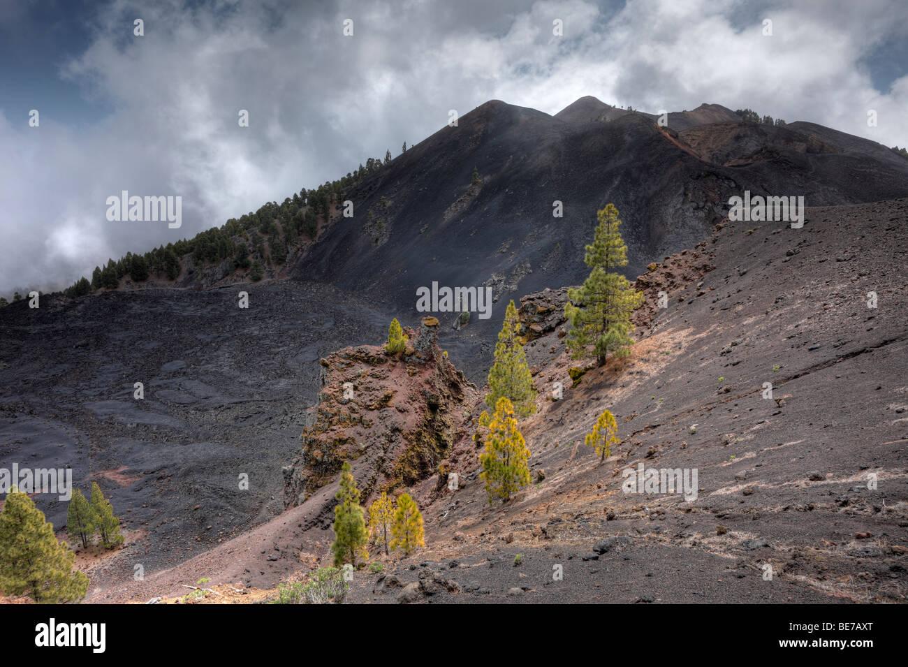 Duraznero volcano, field of lava of the San Juan eruption, 'Ruta de los Volcanes, Volcano Route, La Palma, Canary - Stock Image