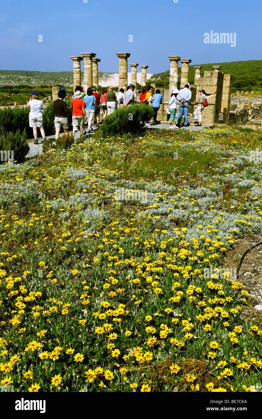 Forum, archeologic park Baelo Claudia near Tarifa, Andalusia, Spain, Europe - Stock Image