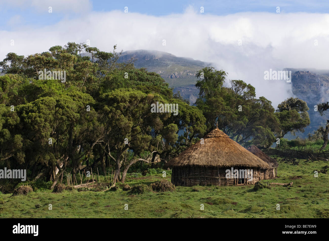 hut in Harenna forest, Bale Mountains National Park, Ethiopia - Stock Image