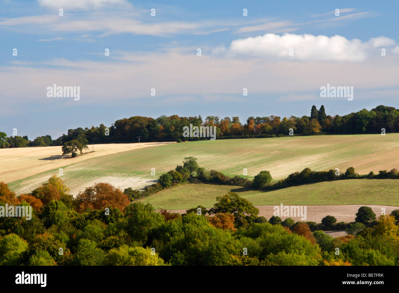 View from Tinkers Wood, High Wycombe over the Hughenden Valley. Buckinghamshire, United Kingdom - Stock Image