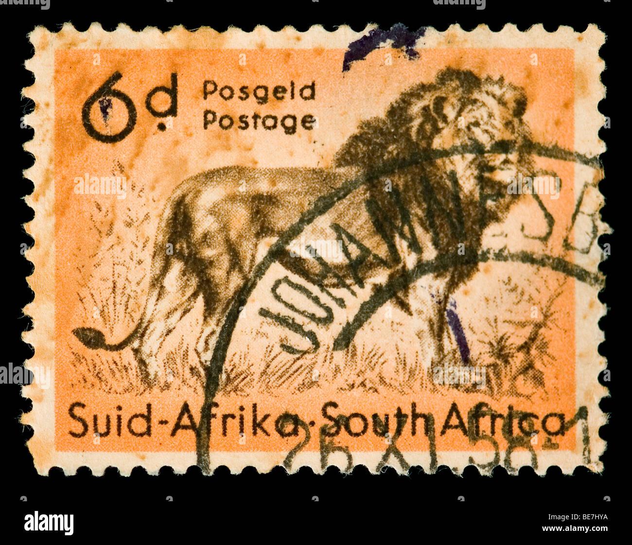 Vintage canceled postage stamp with lion illustration. South Africa, Johannesburg, 1958. - Stock Image
