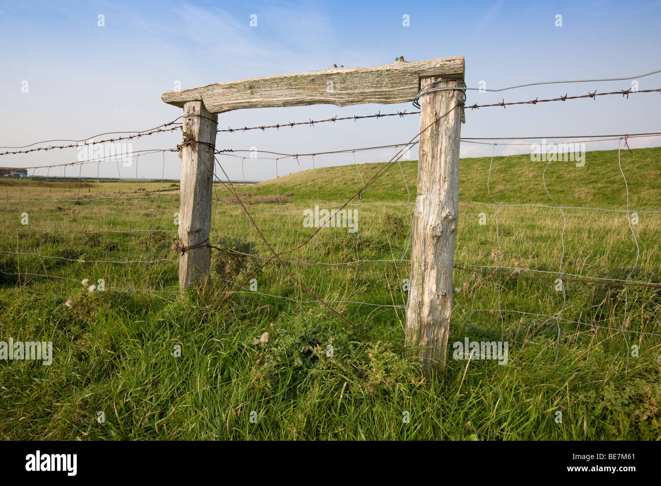pasture fence with barbed wire on a meadow Stock Photo: 25985065 - Alamy