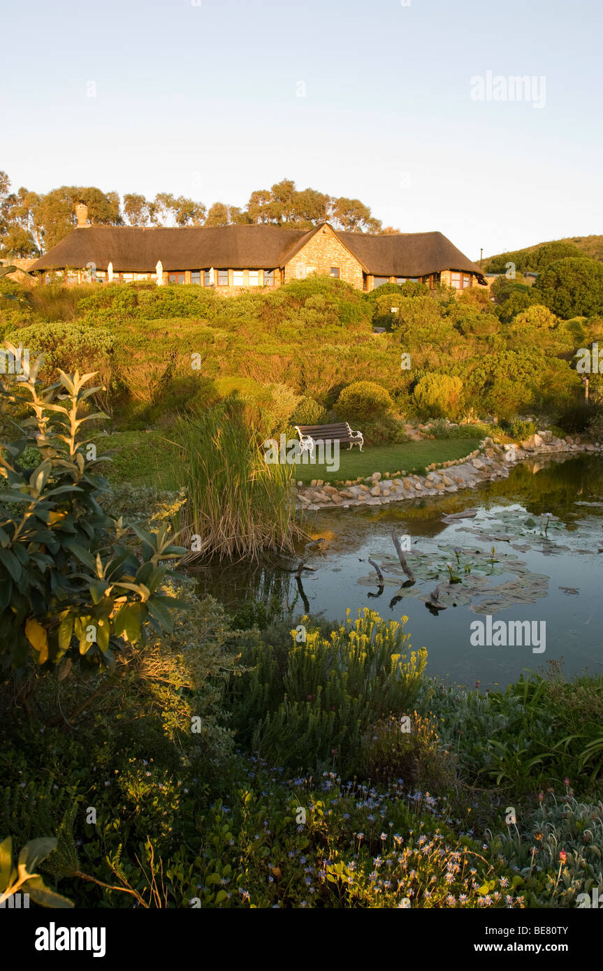 View at a garden with pond and a house in the sunlight, Garden Lodge ...
