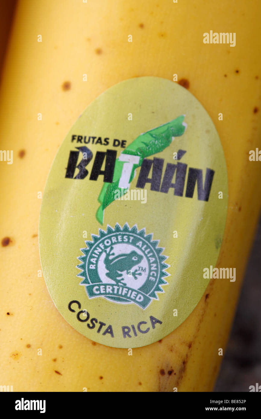 Banana imported from Costa Rica with Rainforest Alliance Certified food product label - Stock Image