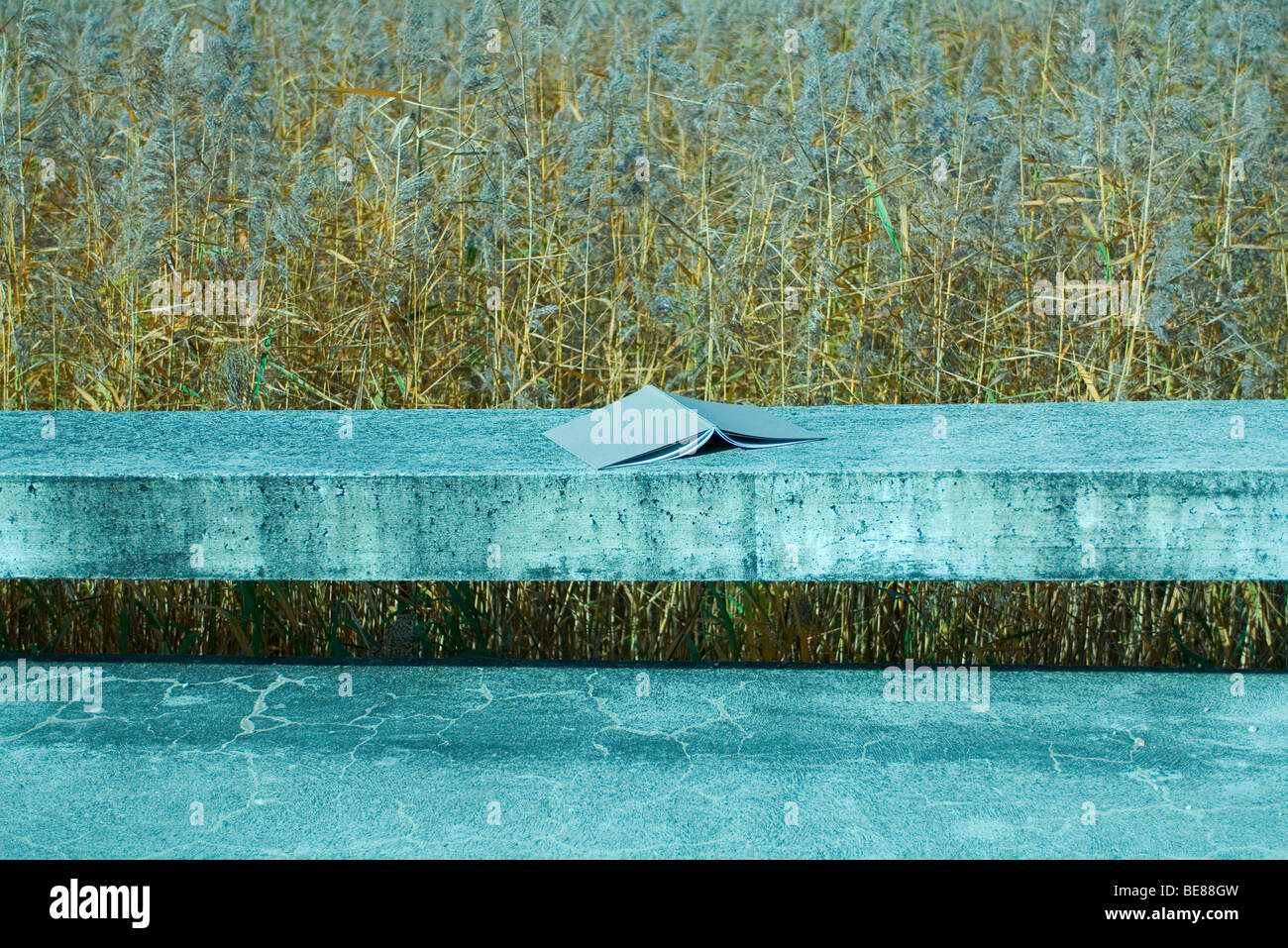 Open book placed face down on concrete ledge, grassy field in background - Stock Image