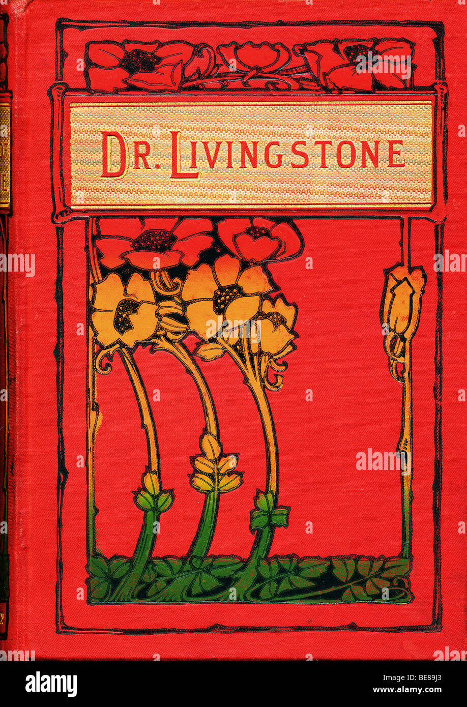 Art Nouveau hardback cover of book The Life & Explorations of Dr Livingstone 1884 FOR EDITORIAL USE ONLY Stock Photo
