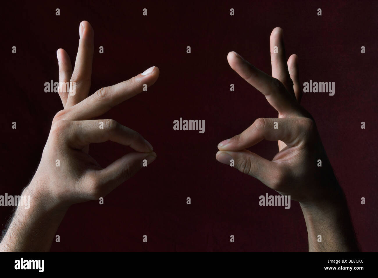 Hands pretending to be roosters - Stock Image