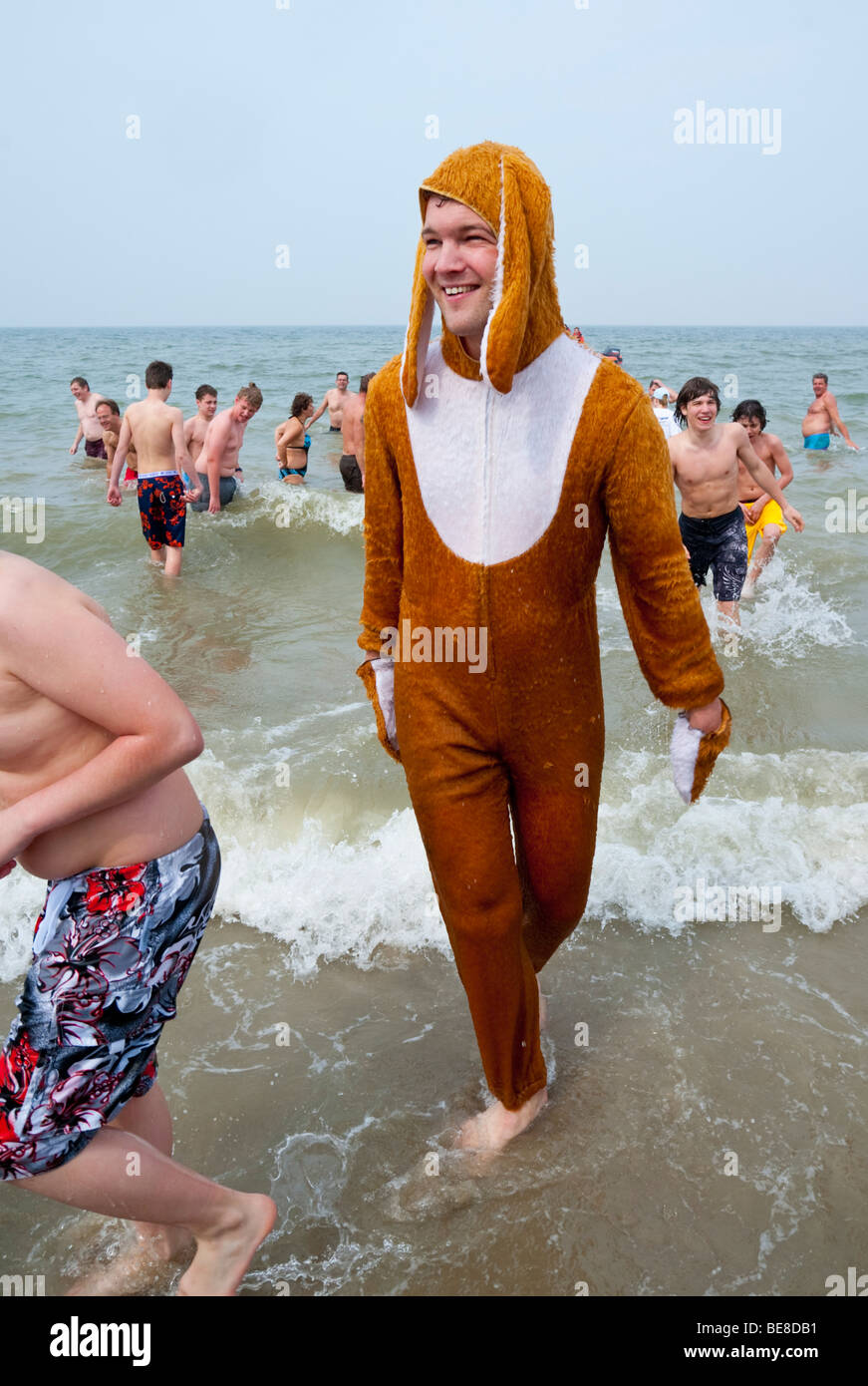 A young man dressed up as an Easter bunny stands in the North Sea at the traditional Renesse Easter Paasduik (Easter - Stock Image