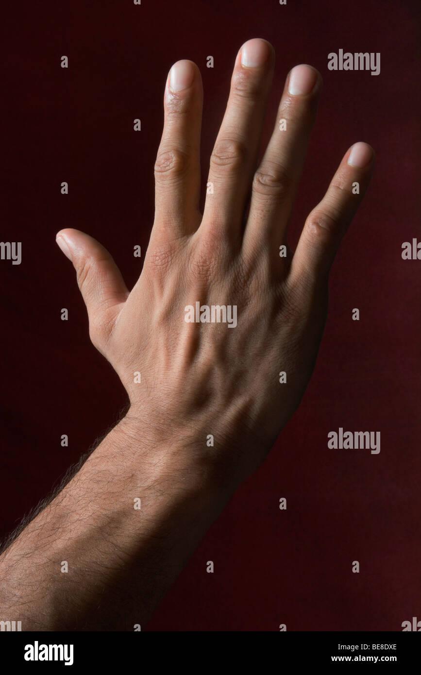 Man's hand - Stock Image