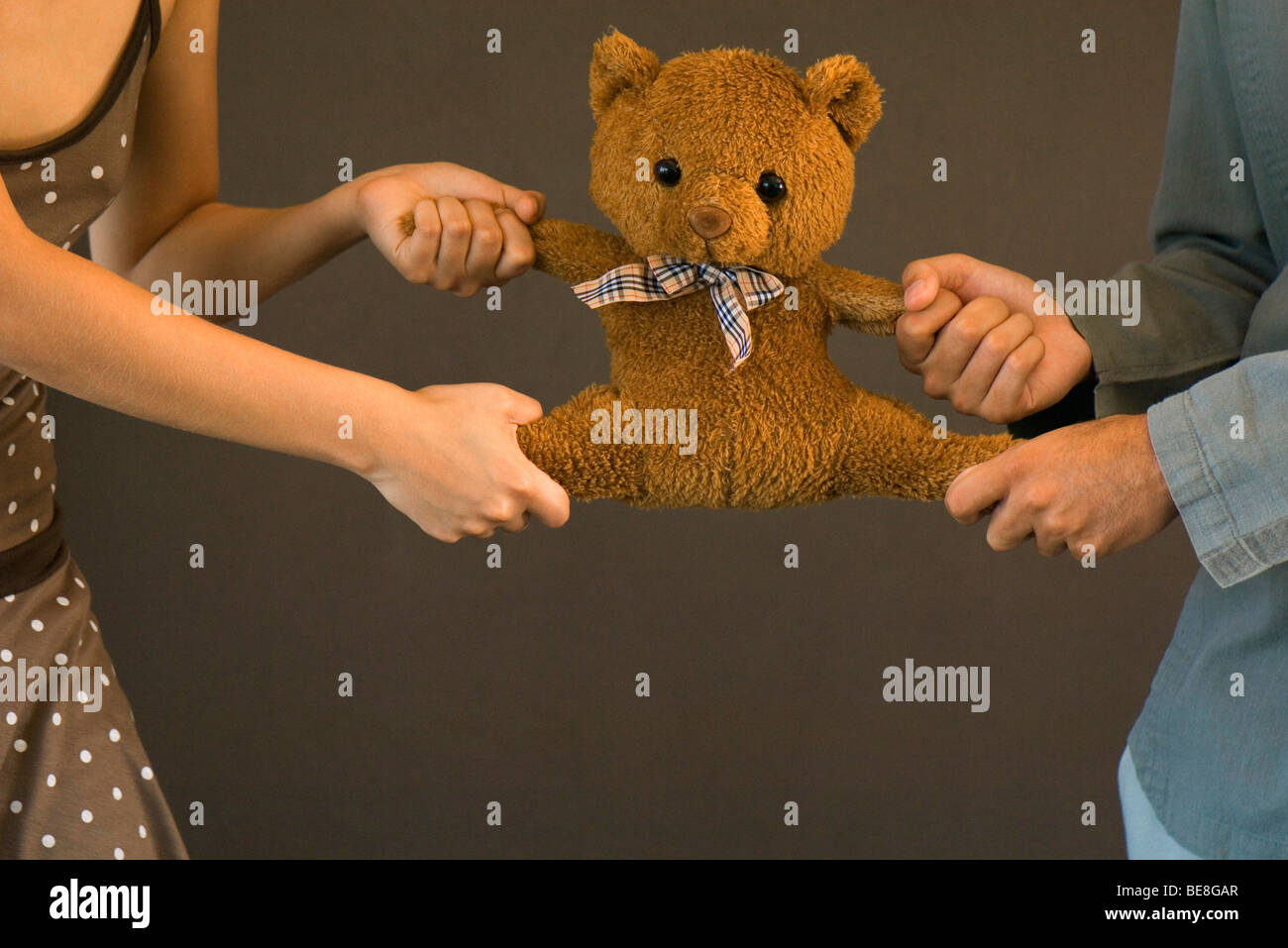 Teddy bear being pulled apart by two people each struggling for possession - Stock Image