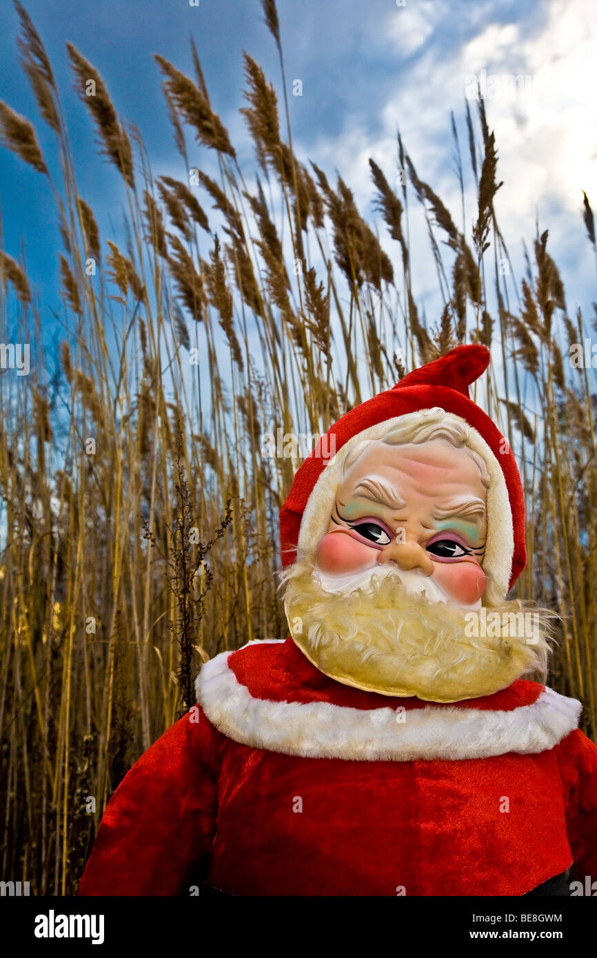 A 1960's era stuffed Santa Claus stands in the evening light in front of golden rushes and a blue sky Stock Photo