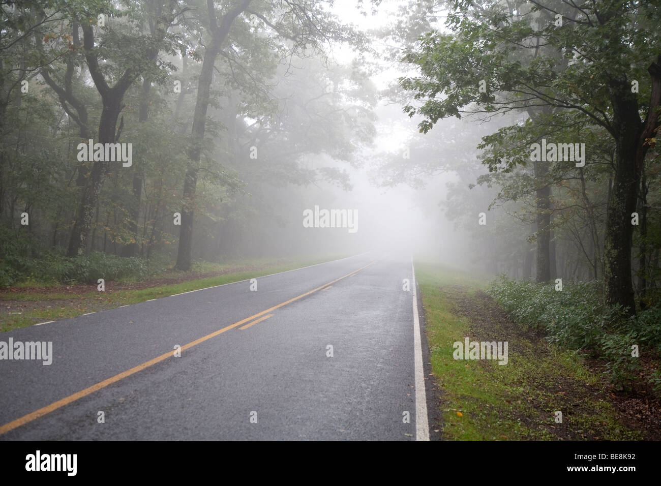 Shenandoah National Park, Virginia - The Skyline Drive in foggy weather. - Stock Image