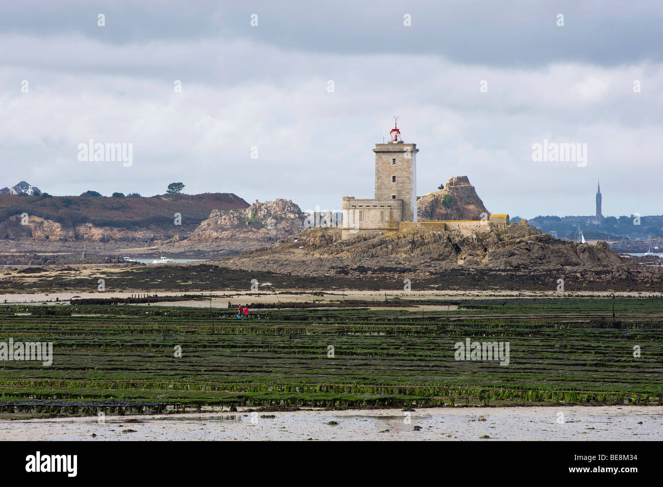 Oyster beds in the Bay of Morlaix with the lighthouse on Ile Noire, Brittany, Finistere, France, Europe Stock Photo