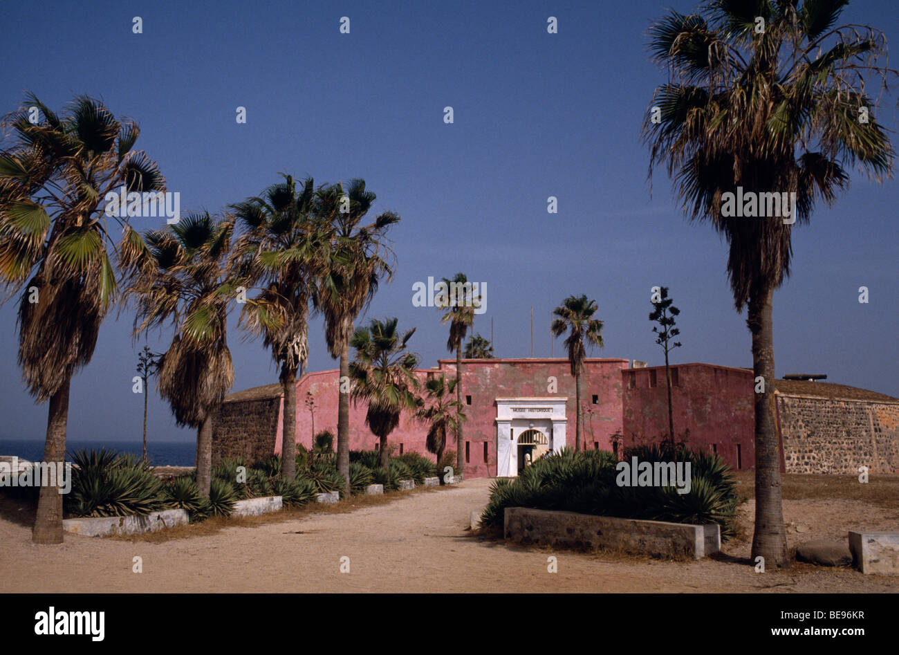 SENEGAL West Africa Goree Island Museum of Diaspora Fort d'Estrees with avenue of palm trees - Stock Image