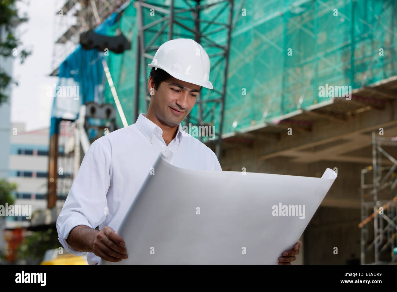 Man with helmet, looking at plans - Stock Image