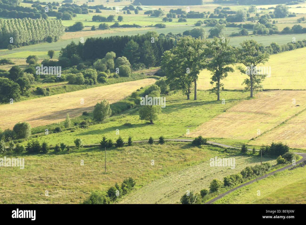 Bocagelandschap met hagen en bomen, Viroinvallei, Belgi Bocage landscape with hedges and trees, valley of Viroin, - Stock Image