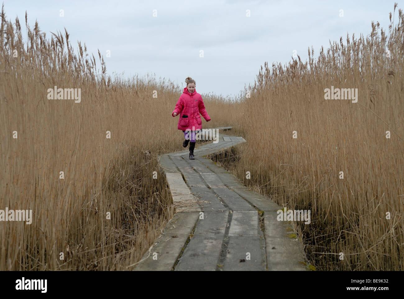 Meisje rennend over knuppelpad naar de Kiekkaaste; Girl running over wooden path to birdwatching tower Stock Photo