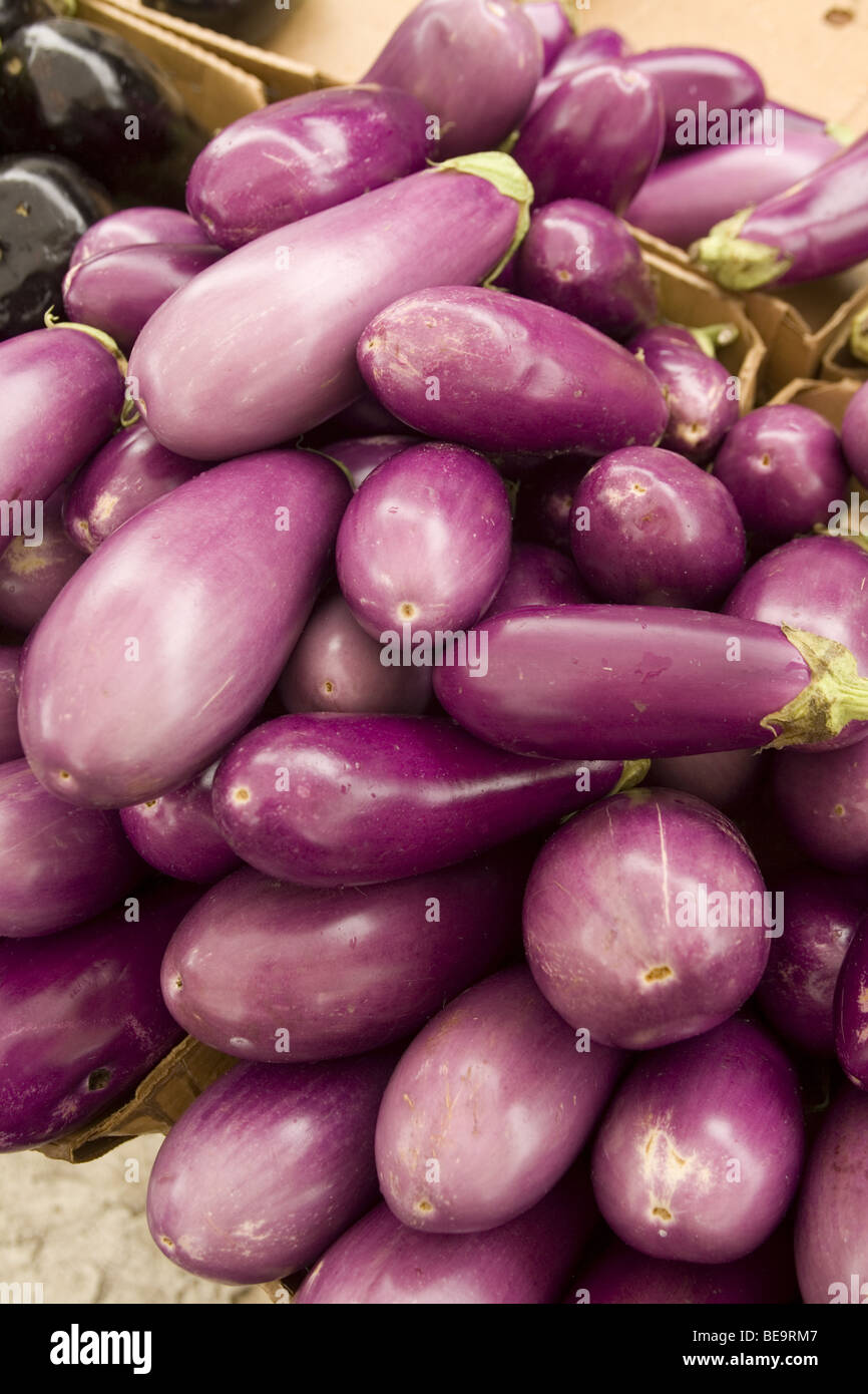 Eggplants for sale at a farmers market in Brooklyn, NY - Stock Image