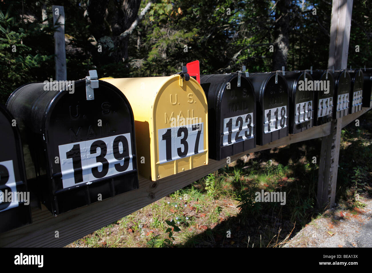 numbered rural mailboxes, Maine - Stock Image