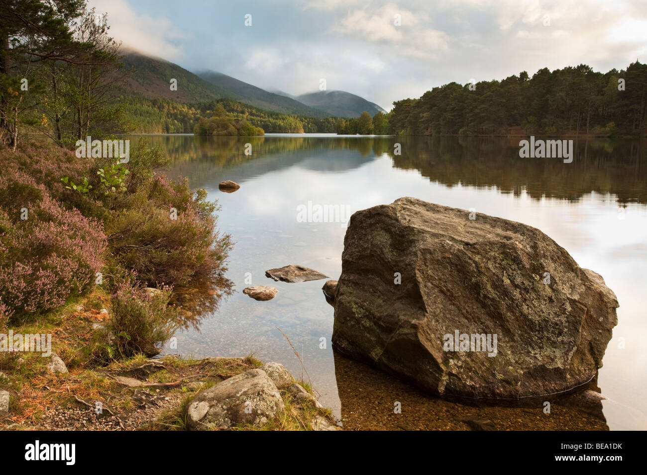 Sunset over Loch an Eilein and castle island, Cairngorms National Park, Scottish Highlands, Uk - Stock Image