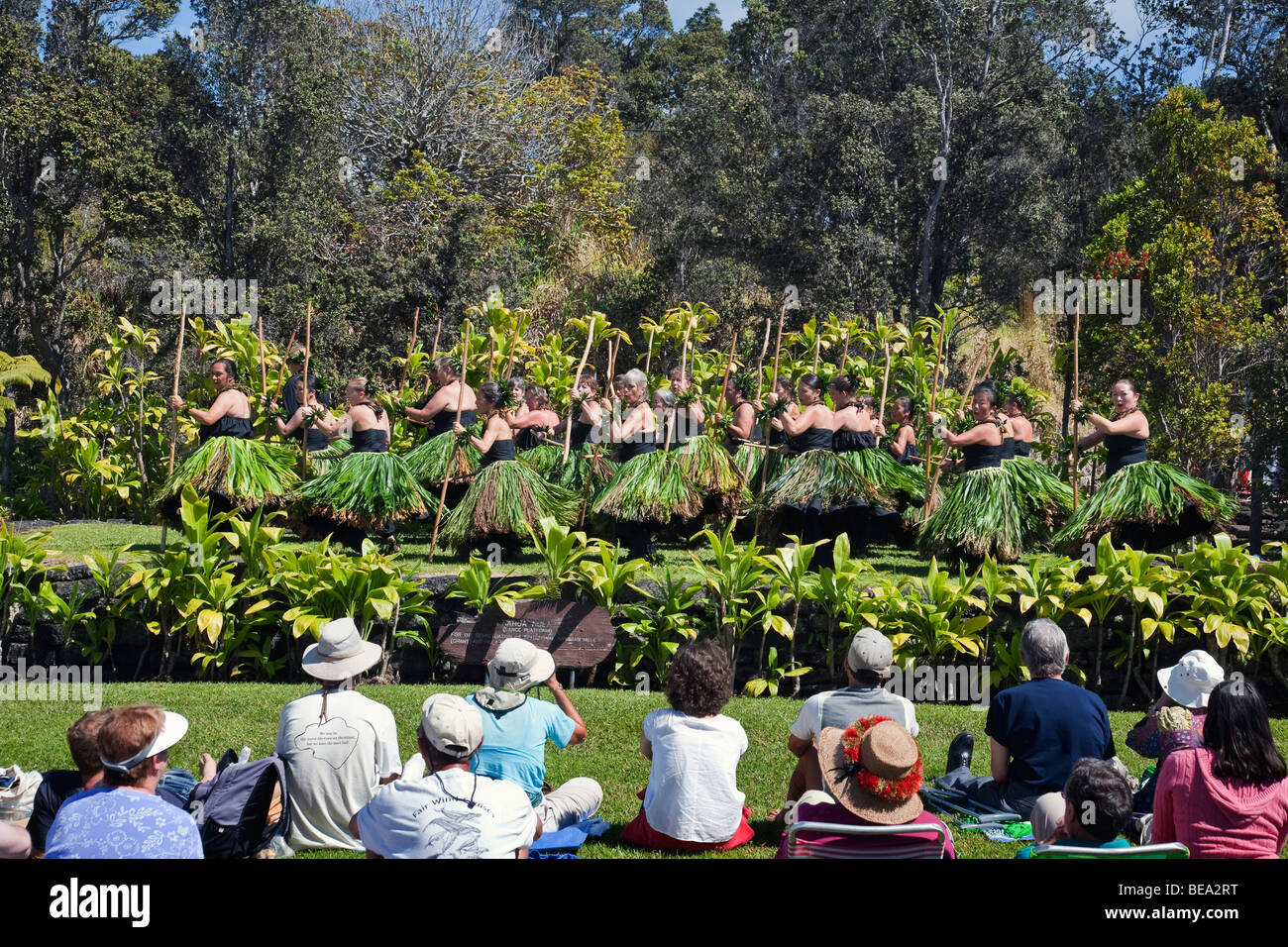 Hula performance in Volcanoes National Park - Stock Image