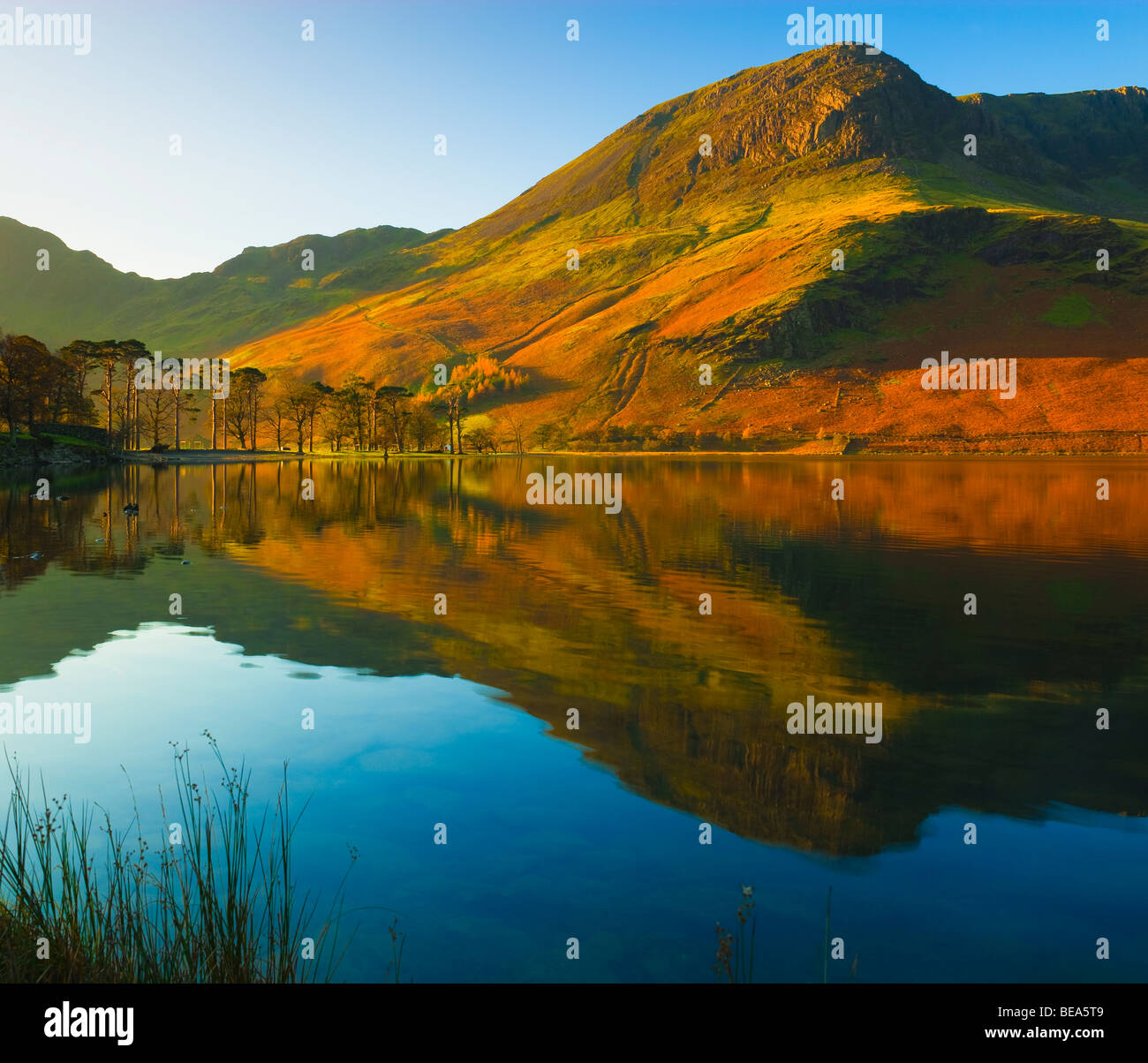 Lake Buttermere Lake District National Park Cumbria England - Stock Image