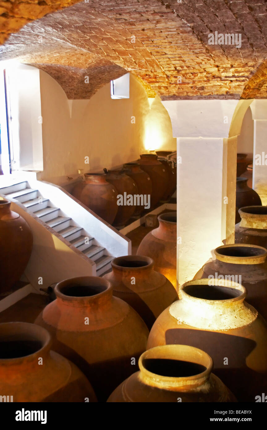amphora shaped earthenware tanks adega jose de sousa rosado fernandes alentejo portugal - Stock Image