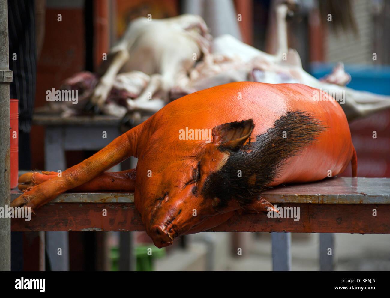 Orange coloured pig outside a butchers shop in Katmandhu, Nepal - Stock Image