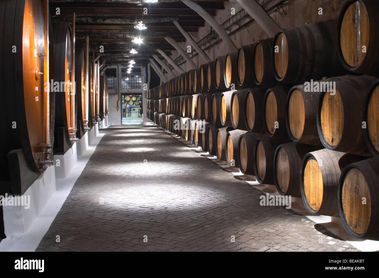 wooden vats sandeman port lodge vila nova de gaia porto portugal Stock Photo