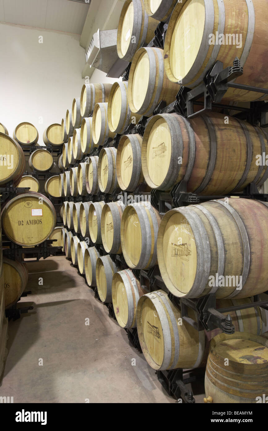 barrel cellar Bodega Agribergidum, DO Bierzo, Pieros-Cacabelos spain castile and leon - Stock Image