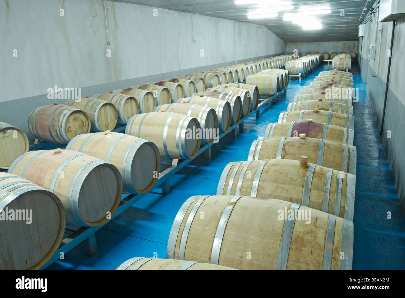 Fermenting Stock Photos Amp Fermenting Stock Images Alamy