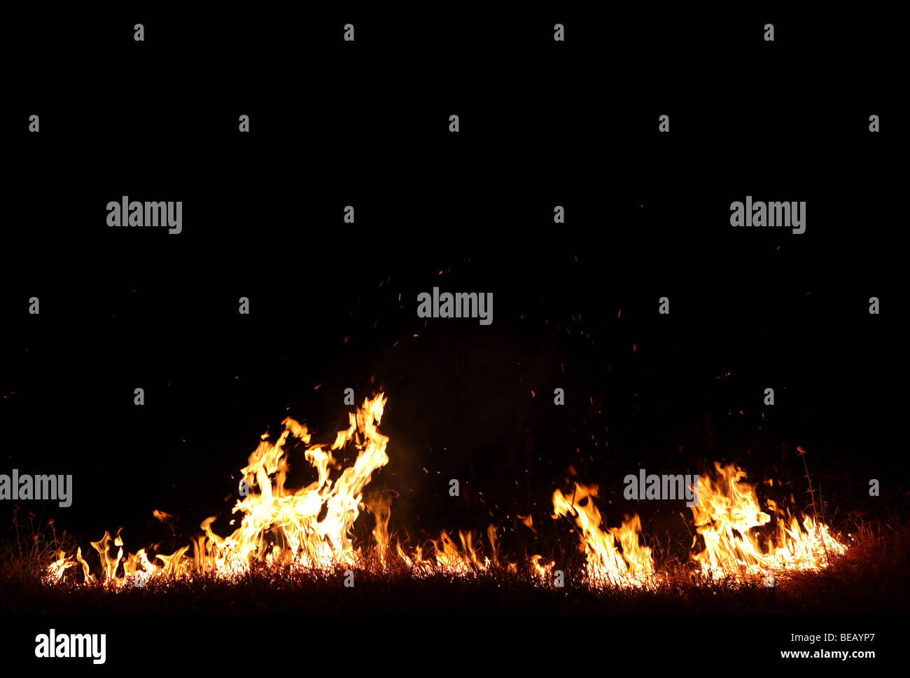 Grass fire - Stock Image