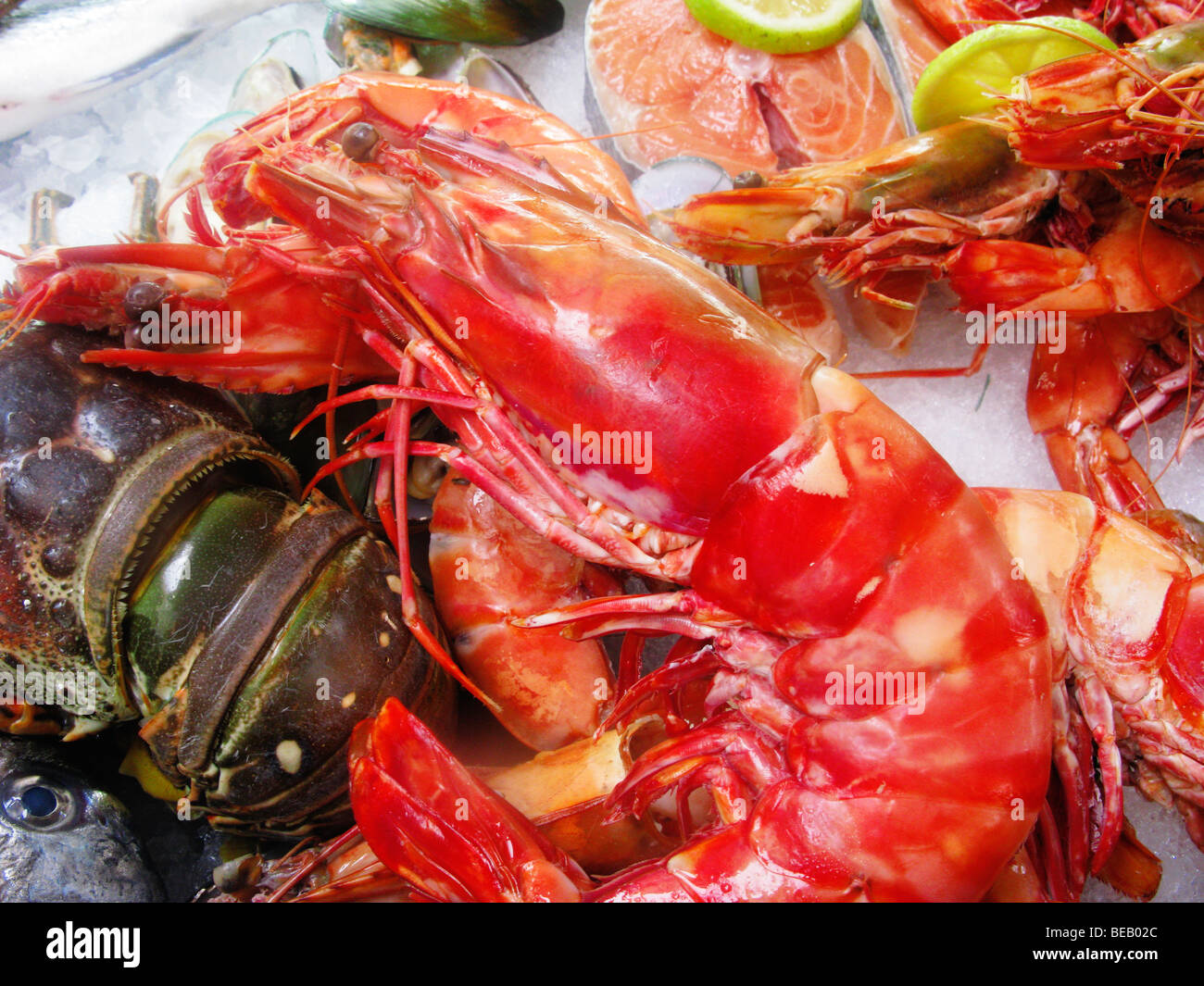 Display of Fresh Prawns and Lobster, Rethymnon Fish Restaurant , Crete, Greece - Stock Image